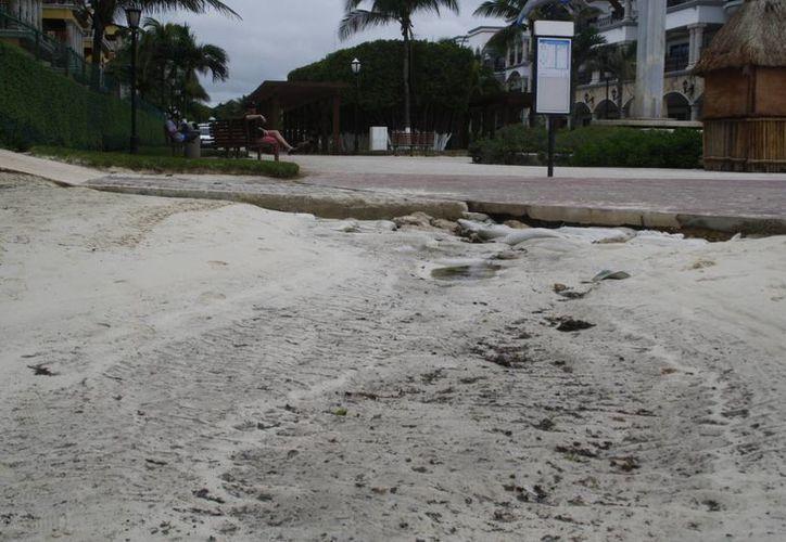 Buscan que los rebosamientos de aguas negras de la Quinta Avenida cesen. (Octavio Martínez/SIPSE)