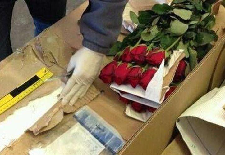 Los narcos han comenzado a ocultar cargamentos de cocaína y heroína en envíos de flores. (radiohuancavilca.com.ec)