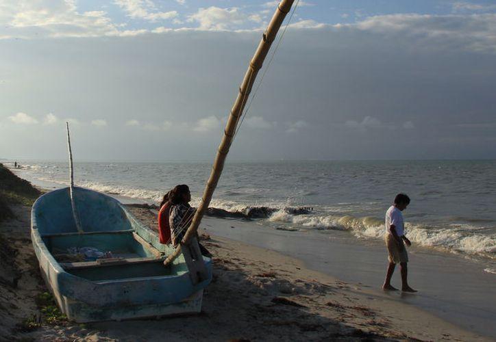 La presencia de marea roja ha sido en los meses de agosto y septiembre. (Foto: Milenio Novedades)