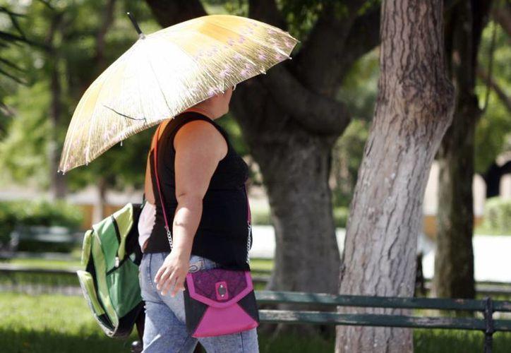 Los días soleados permanecerán en Mérida en los días siguientes. (Christian Ayala/SIPSE)