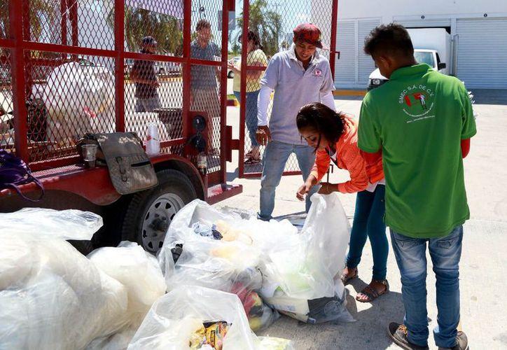 Preparan programa de separación de desechos en el municipio Benito Juárez. (Redacción/SIPSE)
