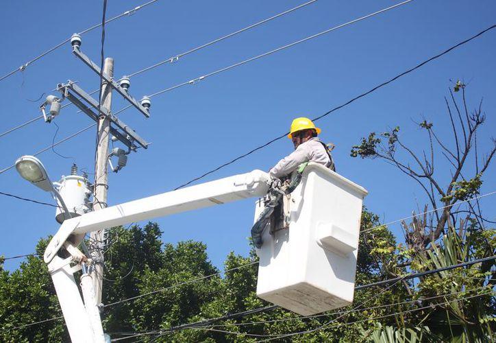 En caso de presentarse una contingencia se actúa de forma inmediata de trabajará atendiendo las instalaciones eléctricas más susceptibles a sufrir daños. (Foto: Daniel Pacheco/SIPSE).