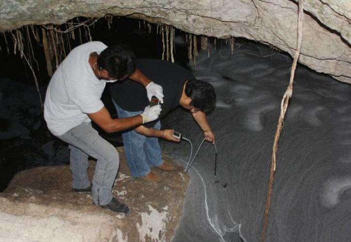 A finales del año pasado se denunció la contaminación de cenotes. (Archivo/SIPSE)