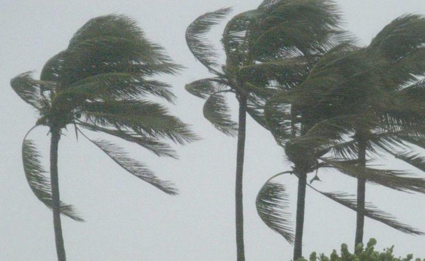 Hasta el momento se han registrado 11 tormentas y 2 huracanes en la temporada de huracanes en la cuenca atlántica. (Archivo/EFE)