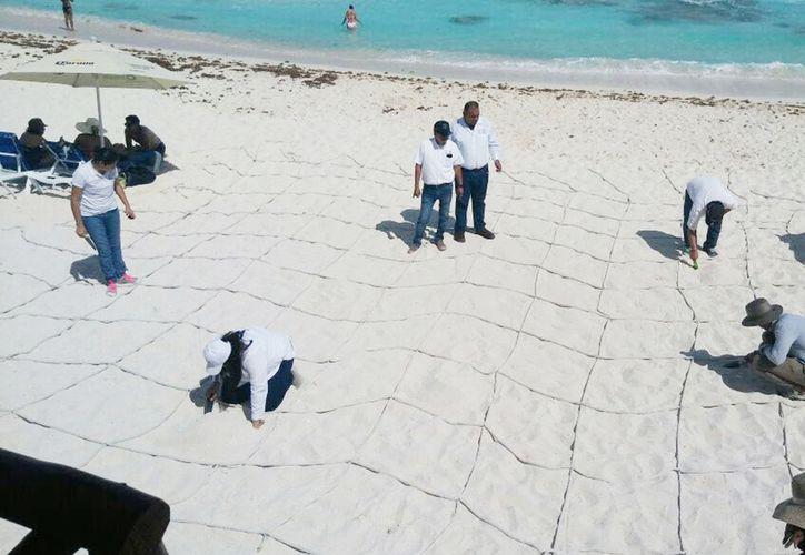El destino tiene siete playas públicas que cuentan con el distintivo internacional. (Cortesía)