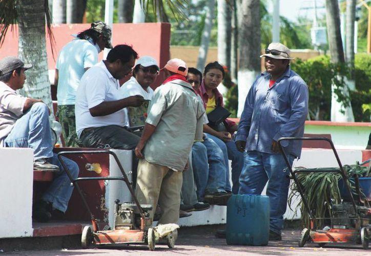 Los empleados que irán a rehabilitación son en su mayoría operarios de servicios públicos.  (Harold Alcocer/SIPSE)
