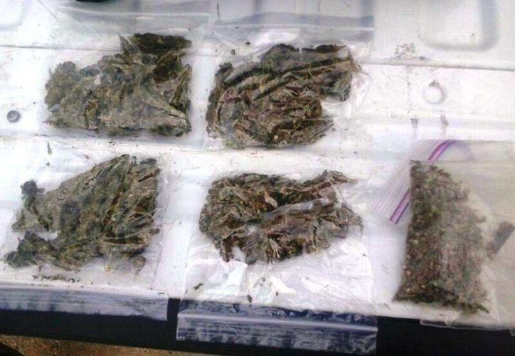 Seis paquetes de marihuana fueron decomisados entre el equipaje de un autobús. (Foto de contexto, Archivo/SIPSE)