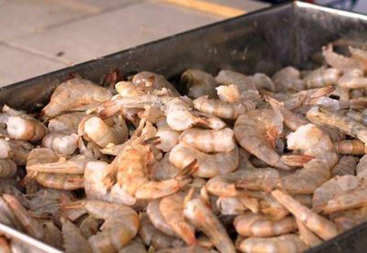Las cooperativas pesqueras señalaron que sí se cubrirá la demanda del producto para Cuaresma. (Edgardo Rodríguez/SIPSE)
