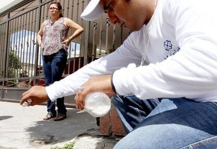 Abatización de alcantarillas a cargo de trabajadores del Ayuntamiento de Mérida.(Milenio Novedades)