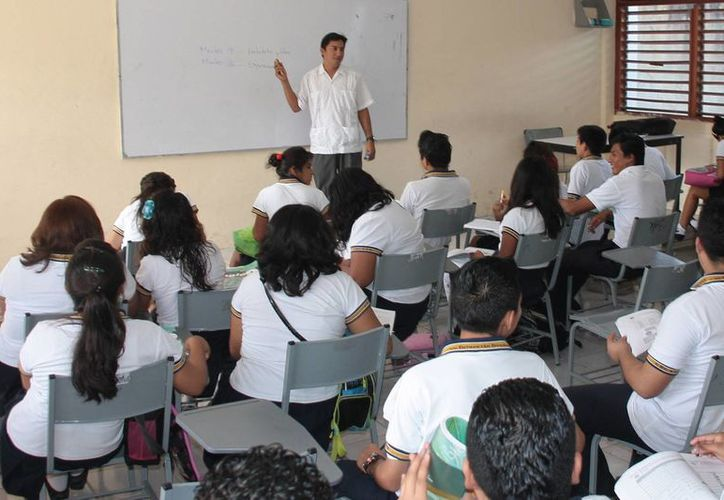 Involucran a alumnos en actividades de educación ecológica. (Israel Leal/SIPSE)