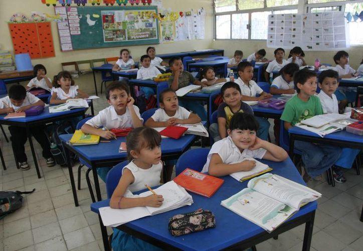 La gran mayoría de las escuelas meridanas de  primaria, secundaria y bachillerato tienen un mediocre o mal nivel educativo, solo 165 tienen un buen nivel y solo 50 tienen nivel de excelencia. (Milenio Novedades)