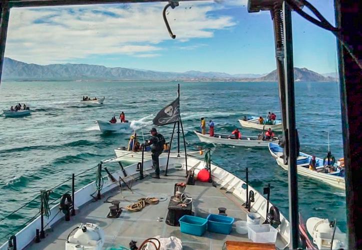 Algunos de los pescadores lanzaron una red frente al Farley Mowat para atascar las propelas. (The Globe and Mail)