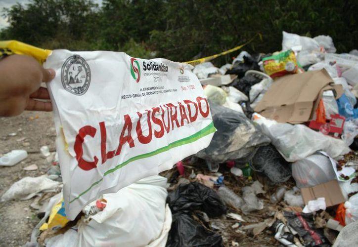 El lugar, ubicado al final de la avenida Universidades, al norte de Playa del Carmen. (Ocatvio Martínez/SIPSE)