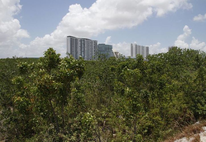 """La mayor inversión será para el """"Ecoparque"""" en Cancún. (Tomás Álvarez/SIPSE)"""