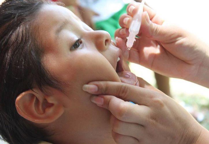 La poliomielitis ataca principalmente al sistema nervioso en la población infantil, por lo que es importante vacunarlos antes de llegar al primer año de edad. (Archivo/SIPSE)