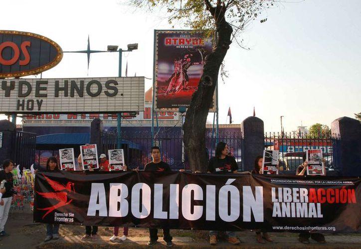 Manifestantes frente a un circo en la capital del país. (Notimex)
