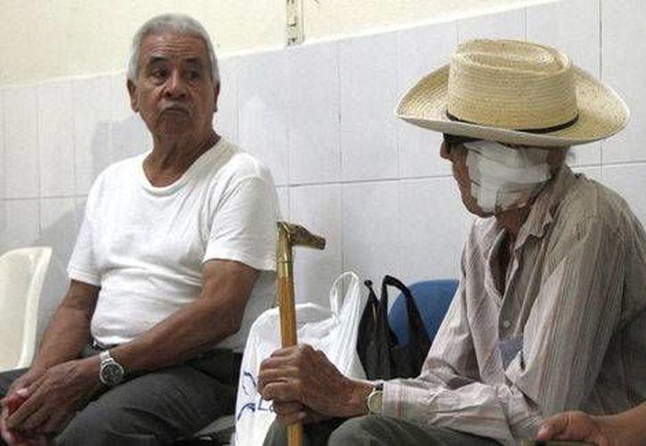 El 70 por ciento de los ancianos foráneos proceden del Estado de México. (Aldo Cháirez/Milenio)