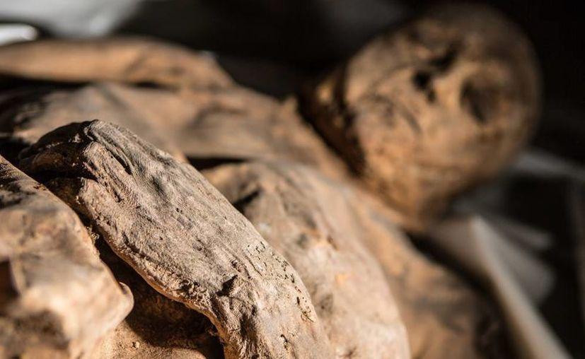 Una de las momias cuyo estudio ha permitido conocer el pasado de la tuberculosis o la viruela. (Kirl Cachovski/Lithuanian Mummy Project)