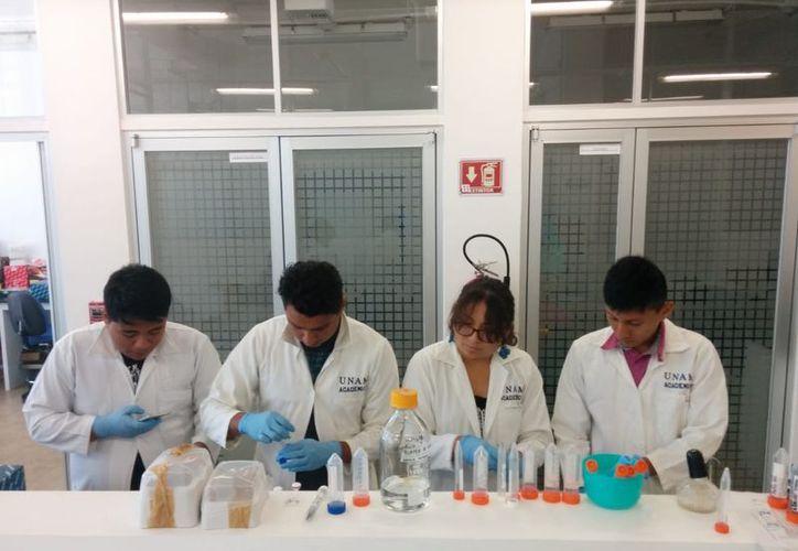 Del cuerpo de agua dos jóvenes extrajeron sedimentos para identificar la diversidad bacteriana del sitio. (Daniel Tejada/SIPSE)