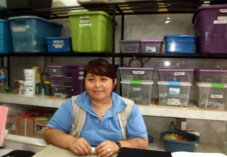 Sandra Bautista Denis, bióloga del Parque Centenario, citó que los grillos, consumidos por los camaleones, se alimentan de zanahoria, para aportar vitamina A y C. (Milenio Novedades)