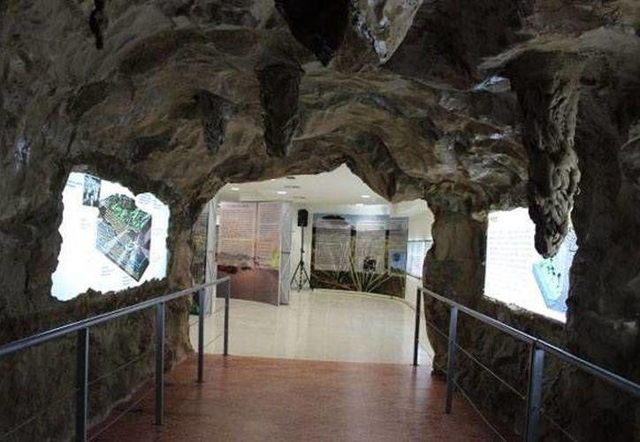 Las rocas con las que contará el Museo del Cráter de Chicxulub (foto) permitirá socializar el conocimiento de una manera más directa, según Mario Rebolledo, investigador del CICY. (Milenio Novedades)