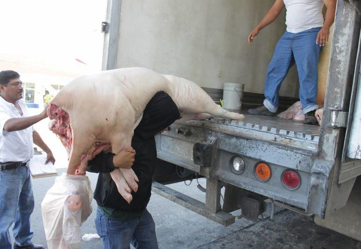 La red de distribución de carne cumple con las medidas de higiene que requiere la Cofepris para el transporte hacia los mercados. (Harold Alcocer/SIPSE)