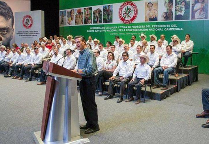 Peña Nieto indicó que gracias al trabajo de los mexicanos, el país es el doceavo productor agrícola a nivel mundial. (Presidencia)
