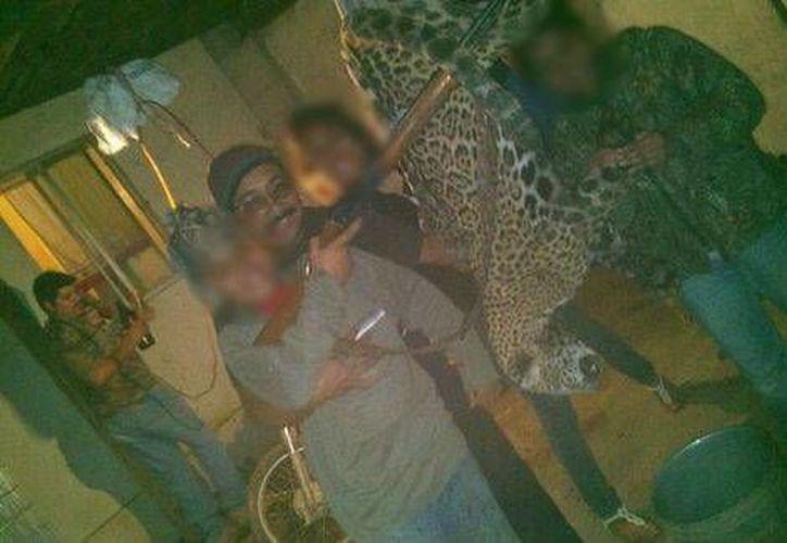 En las fotos se aprecian a integrantes de una familia sosteniendo al jaguar con lazos. (Foto: Redes sociales)