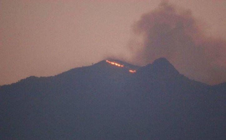 El fuego afectó los parajes de Joyas Grandes, Lomas del Caballo y Cruz del Marquez. (Foto tomada del Twitter de @javalverde)