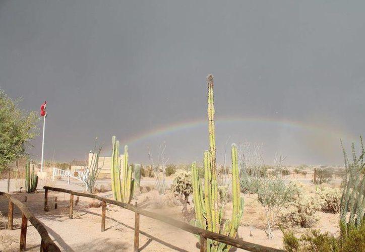 La Reserva abarca más de 700 mil hectáreas. (Facebook/Reserva de la Biosfera del Pinacate)