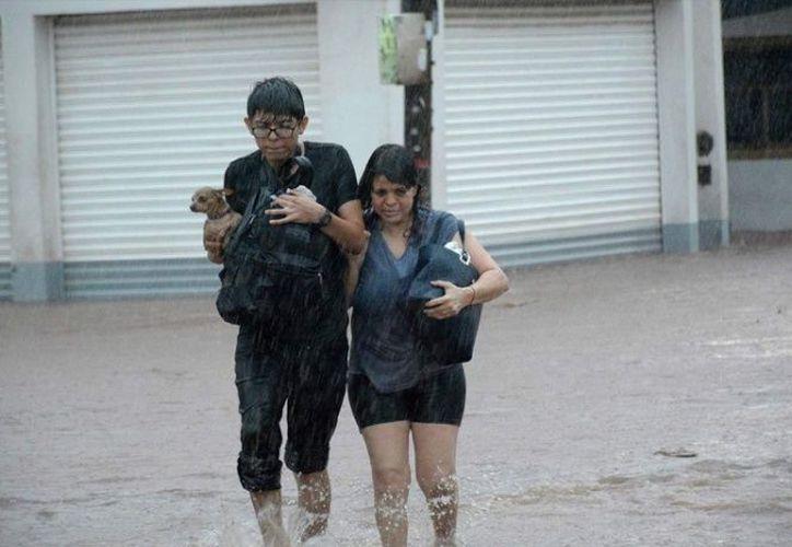 El DIF recibirá ayuda para la población damnificada de Sinaloa. (Cuarto Oscuro)