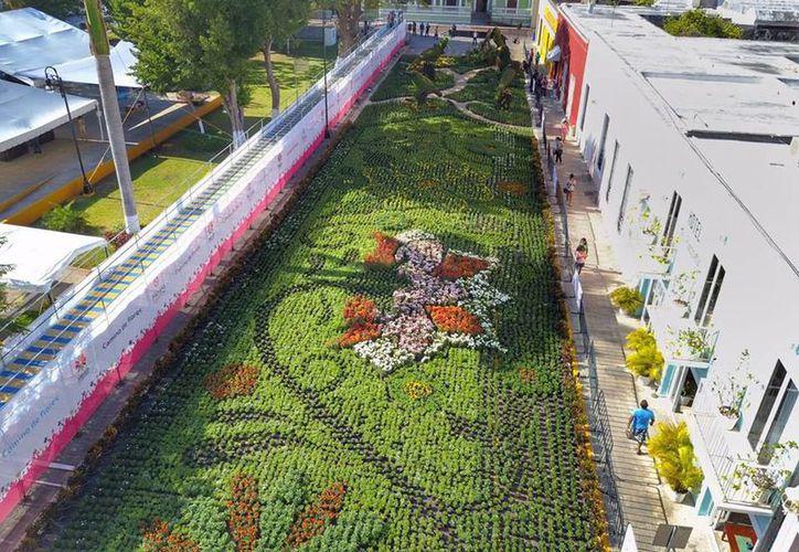 El Ayuntamiento tenía planeado que el 9 de abril el 'Camino de Flores' sea cerrado. (Facebook/ Ayuntamiento de Mérida)