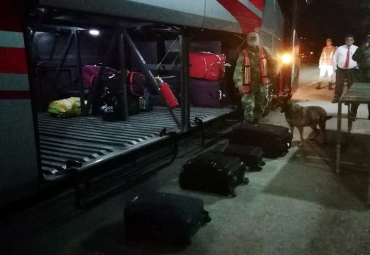 """La maleta fue detectada con apoyo de un binomio binomio canino militar de nombre """"Niky"""". (Foto: Milenio Novedades)"""