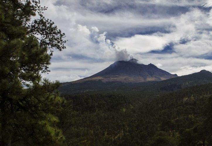 El volcán Popocatépetl registró durante las últimas 24 horas 92 exhalaciones de vapor de agua y gases. (Archivo/Notimex)