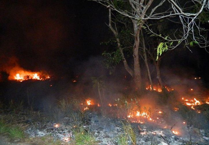 Exhortan a respetar el período restringido de quema. (Raúl Balam/SIPSE)
