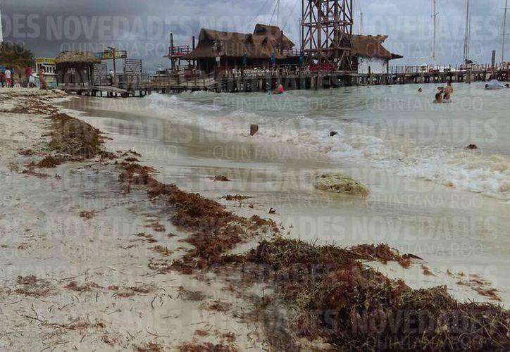 Es muy importante mantener el frente costero del destino turístico. (Israel Leal/SIPSE)