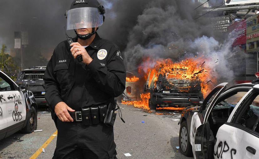 El comandante Cory Palka, del Departamento de Policía de Los Ángeles, realiza labores de vigilancia frente a varios autos de la policía destruidos durante una protesta por la muerte de George Floyd, en Los Ángeles.(AP Foto/Mark J. Terrill)