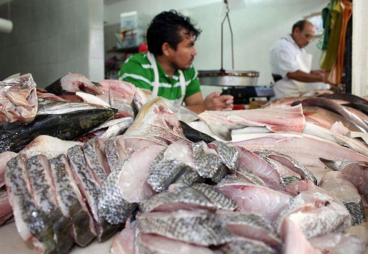 Los vendedores de pescado reportan poca actividad en sus negocios en comparación con otras fechas del año. (Enrique Mena/SIPSE)