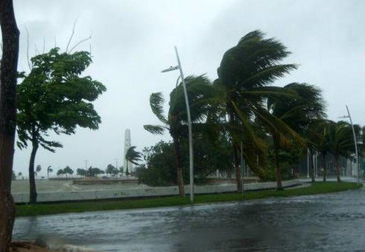 Por la ubicación geográfica, Quintana Roo está en constante peligro de ser afectado por fenómenos hidrometeorológicos. (Harold Alcocer/SIPSE)