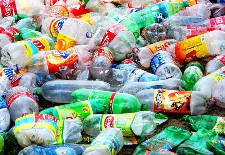 Los alumnos depositarán los envases PET o aluminio en un contenedor, que estará en su escuela. (Contexto/Internet)