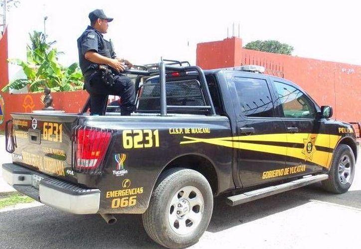 Operativo de elementos policíacos en el puerto de Sisal. (Milenio Novedades)