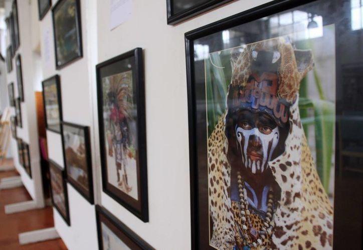 Las imágenes se exhiben desde este lunes en la biblioteca de la Universidad de Quintana Roo. (Jorge Carrillo/SIPSE)