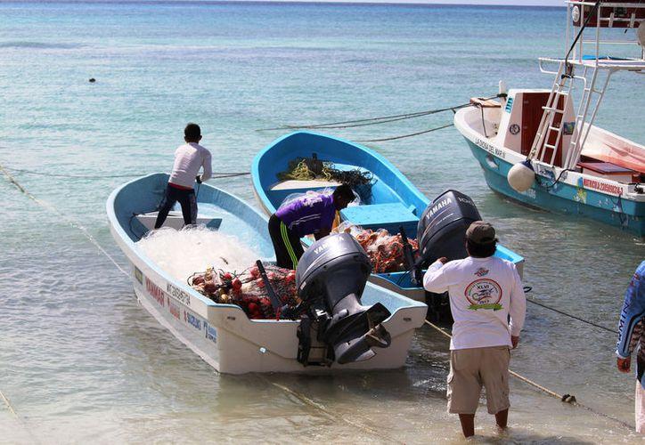 Se perjudica cerca de 50 trabajadores(Foto: Octavio Martínez)
