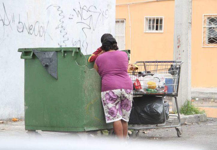 Los pepenadores aseguran que las zonas en donde existan contenedores, son las mejores. (Tomás Álvarez/SIPSE)