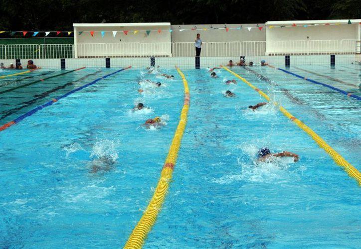 Con el agua que se pierde se puede llenar una alberca olímpica. (Tomás Álvarez/SIPSE)