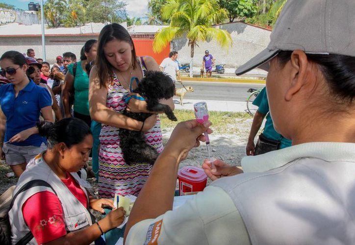 En diferentes puntos de la ciudad se instalaron puestos de vacunación. (Cortesía/SIPSE)