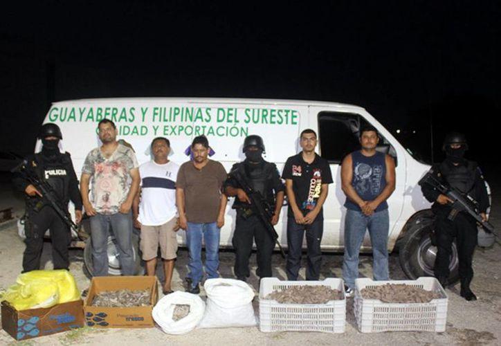 """Los """"pepineros"""" se transportaban en una camioneta que llevaba guayaberas. (SIPSE)"""