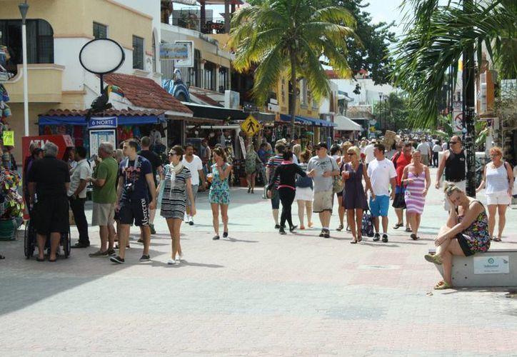 Este reglamento regirá a la vía turística, en particular a los establecimientos que operan en la Quintan Avenida. (Alida Martínez/SIPSE)
