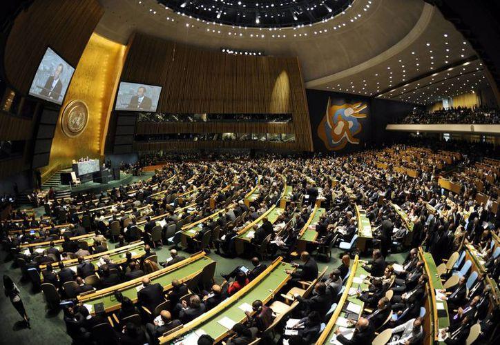 Piden que los países se ajusten a la legislación mundial en derechos humanos. (EFE)