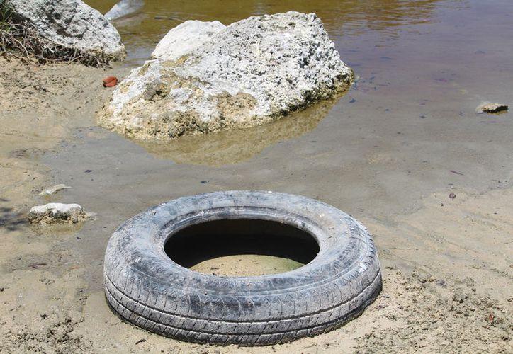 Hay que recordar que este sistema de humedal ha sido dañado en otras ocasiones. (Octavio Martínez/SIPSE)